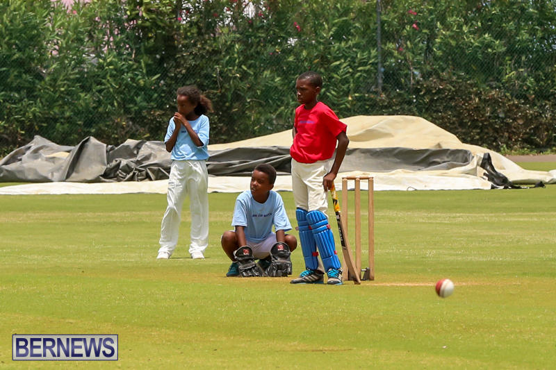 Mini-Cup-Match-Bermuda-July-21-2015-1