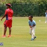 Mini Cup Match Bermuda, July 21 2015-2