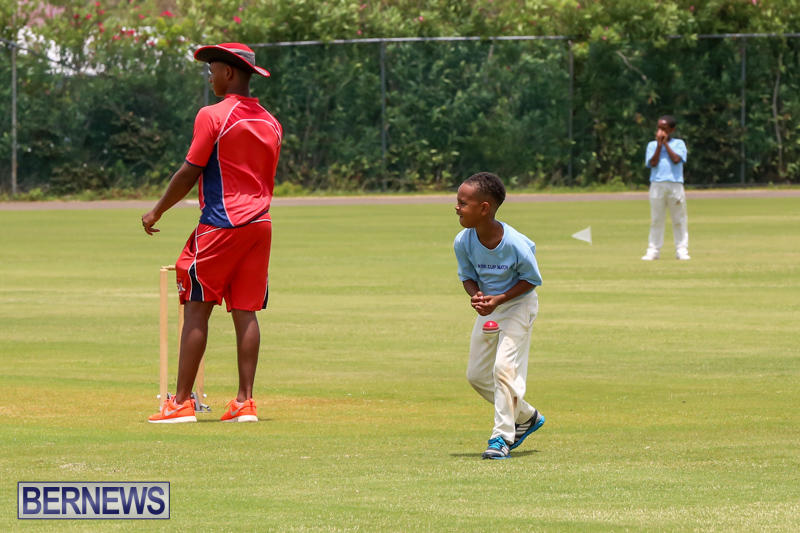 Mini-Cup-Match-Bermuda-July-21-2015-2