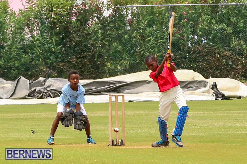 Mini-Cup-Match-Bermuda-July-21-2015-20