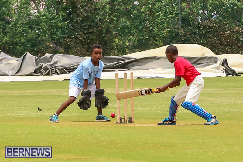 Mini-Cup-Match-Bermuda-July-21-2015-22