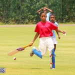 Mini Cup Match Bermuda, July 21 2015-40