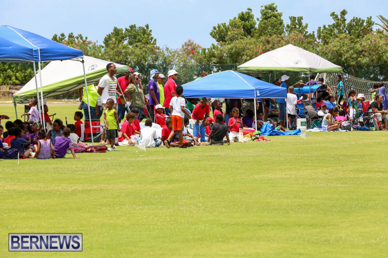 Mini-Cup-Match-Bermuda-July-21-2015-65