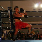 knock out fight night July 13 2015 (120)