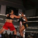 knock out fight night July 13 2015 (130)