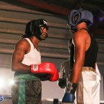 knock out fight night July 13 2015 (44)