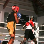 knock out fight night July 13 2015 (68)
