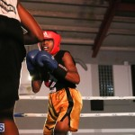 knock out fight night July 13 2015 (77)