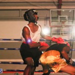 knock out fight night July 13 2015 (79)