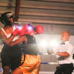 knock out fight night July 13 2015 (80)