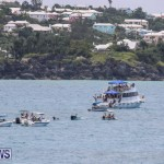 Around The Island Powerboat Race Bermuda, August 9 2015-84