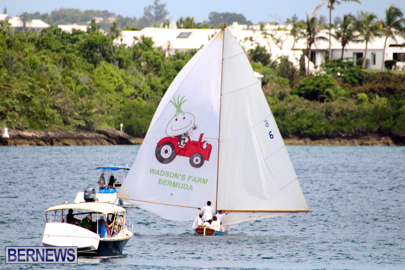 Dinghy-Racing-August-13-2015-15