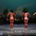 Night Of Champions Bodybuilding Fitness Bermuda, August 15 2015-109