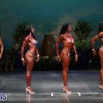 Night Of Champions Bodybuilding Fitness Bermuda, August 15 2015-115