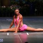 Night Of Champions Bodybuilding Fitness Bermuda, August 15 2015-129