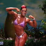 Night Of Champions Bodybuilding Fitness Bermuda, August 15 2015-209