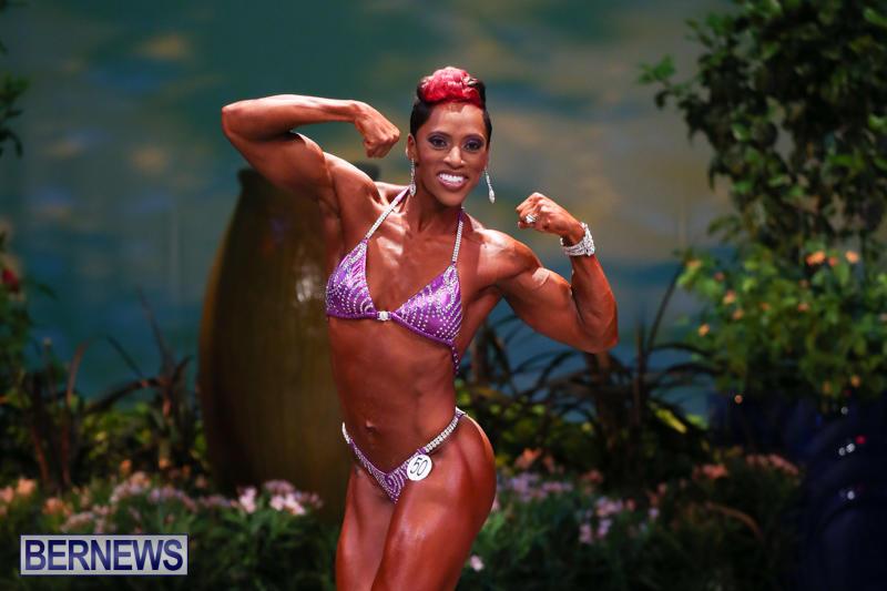 Night-Of-Champions-Bodybuilding-Fitness-Bermuda-August-15-2015-209