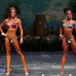 Night Of Champions Bodybuilding Fitness Bermuda, August 15 2015-217