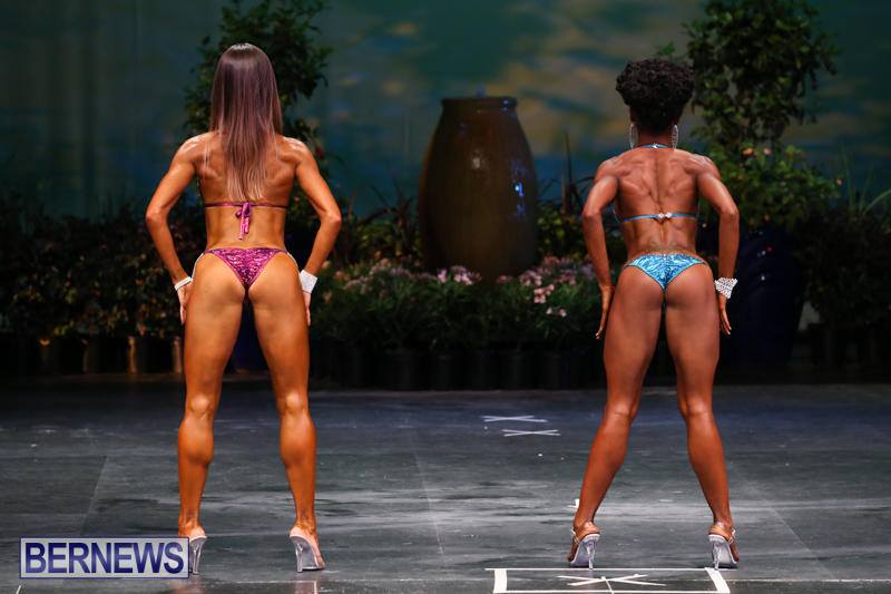 Night-Of-Champions-Bodybuilding-Fitness-Bermuda-August-15-2015-218