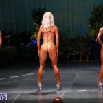 Night Of Champions Bodybuilding Fitness Bermuda, August 15 2015-24