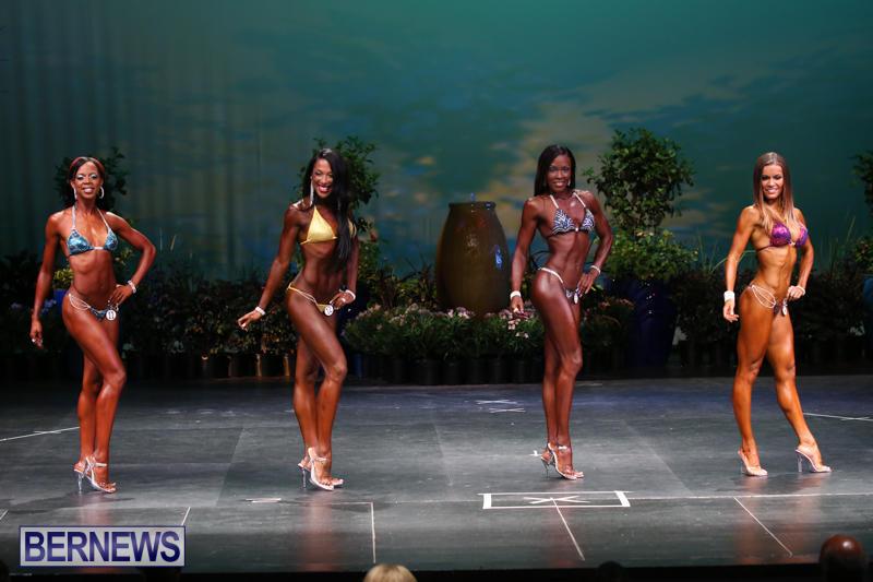 Night-Of-Champions-Bodybuilding-Fitness-Bermuda-August-15-2015-43