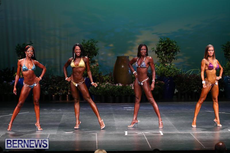 Night-Of-Champions-Bodybuilding-Fitness-Bermuda-August-15-2015-45