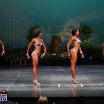 Night Of Champions Bodybuilding Fitness Bermuda, August 15 2015-87