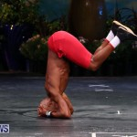 Night Of Champions Bodybuilding Fitness Physique Bermuda, August 15 2015-157