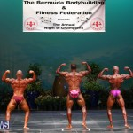 Night Of Champions Bodybuilding Fitness Physique Bermuda, August 15 2015-189