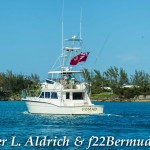 Non Mariners PA Bermuda, August 2 2015-112