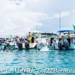 Non Mariners PA Bermuda, August 2 2015-12