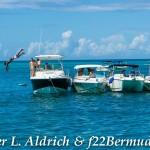 Non Mariners PA Bermuda, August 2 2015-90