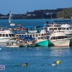 Non Mariners Race Bermuda, August 2 2015-126