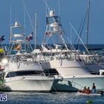 Non Mariners Race Bermuda, August 2 2015-160