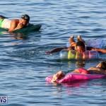 Non Mariners Race Bermuda, August 2 2015-201