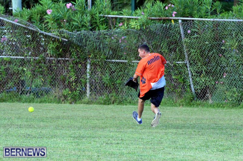 Softball-August-19-2015-7