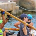 Bermuda Pilot Gig Club, September 20 2015-24
