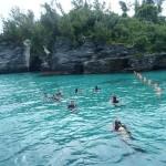 Bermuda Sub-Aqua Club 23 Sept (12)
