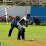Cricket Bermuda September 8 2015 (10)