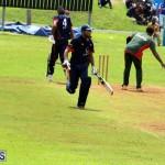 Cricket Bermuda September 8 2015 (11)