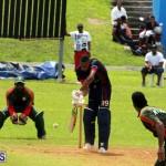 Cricket Bermuda September 8 2015 (19)