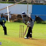 Cricket Bermuda September 8 2015 (3)