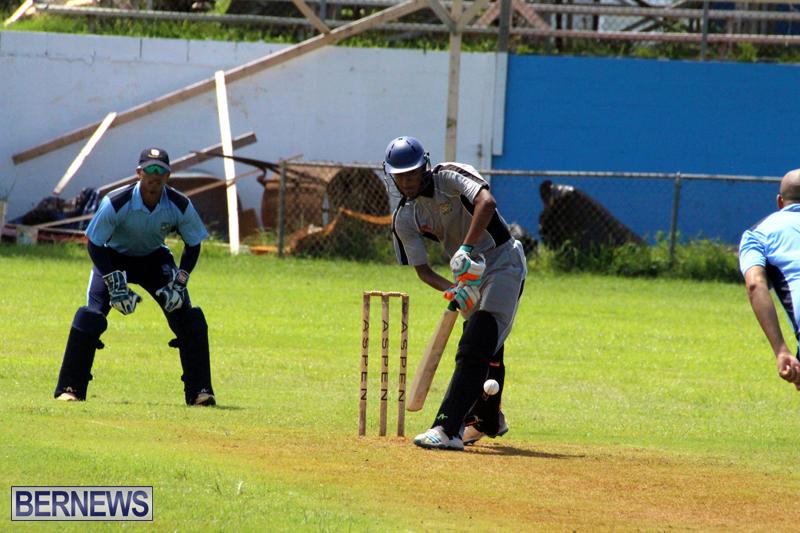 Cricket-Bermuda-September-8-2015-3