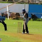 Cricket Bermuda September 8 2015 (4)