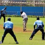 Cricket Bermuda September 8 2015 (5)