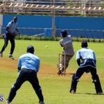 Cricket Bermuda September 8 2015 (6)