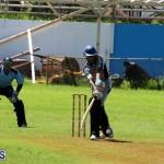 Cricket Bermuda September 8 2015 (8)