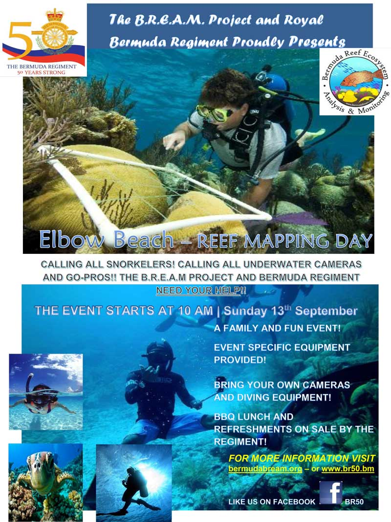 Poster for Mapping Day - FINAL August 2015