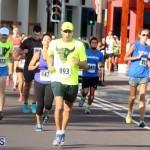 Running of the Bulls Bermuda September 2015 (4)