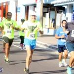 Running of the Bulls Bermuda September 2015 (5)